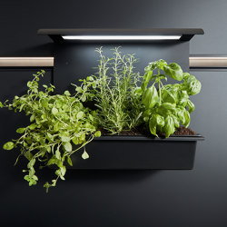 next125 cube panel garden | Kitchen organization | next125
