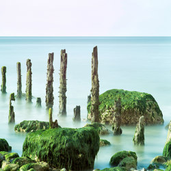 Ap Digital 3 | Papel Pintado 471855 Normandie | Revestimientos de paredes / papeles pintados | Architects Paper