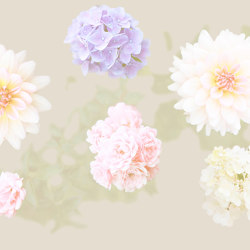 Ap Digital 3 | Wallpaper 471863 Flowers | Wall coverings / wallpapers | Architects Paper