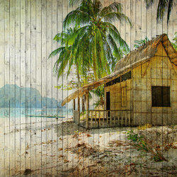 Walls By Patel 2 | Wallpaper DD113672 Tahiti 1 | Wall coverings / wallpapers | Architects Paper