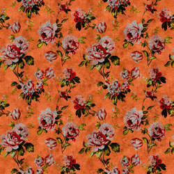 Walls By Patel 2 | Wallpaper DD113902 Wild Roses 2 | Wall coverings / wallpapers | Architects Paper