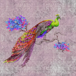 Walls By Patel 2 | Wallpaper DD114312 Peacock 2 | Wall coverings / wallpapers | Architects Paper