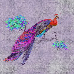 Walls By Patel 2 | Wallpaper DD114317 Peacock 3 | Wall coverings / wallpapers | Architects Paper