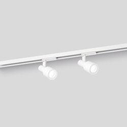 SARA on track 1.0 PAR16 | Lighting systems | Wever & Ducré