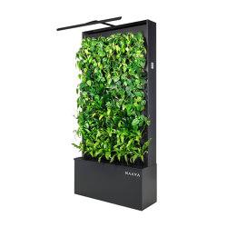 Naava Green Healthech Wall pro | Privacy screen | Teknion