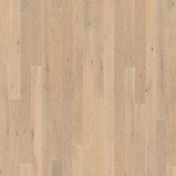 Unity | Powder Oak | Wood flooring | Kährs