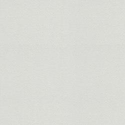 Meistervlies 2020 | Wallpaper 577610 | Revestimientos de paredes / papeles pintados | Architects Paper