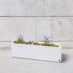 Box to Box | Box VL Planter | Plant pots | Sit