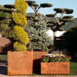 KUBIK CORTEN STEEL PLANTER | Plant pots | Fesfoc