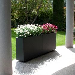 WALL PLANTER | Plant pots | Fesfoc