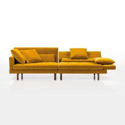 amber sofa | Canapés | Brühl