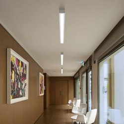 Box_SB   Ceiling lights   Linea Light Group