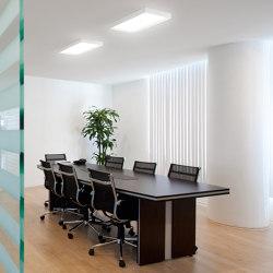 Tara_Dimmable   Ceiling lights   Linea Light Group