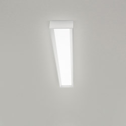 Tara_Dimmable | Ceiling lights | Linea Light Group