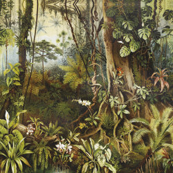 Amazzonia | Carta parati / tappezzeria | Inkiostro Bianco