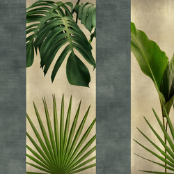 Flora   Revestimientos de paredes / papeles pintados   GLAMORA