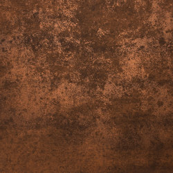 Rust | Gilded Rust | Metal sheets | Pure + FreeForm