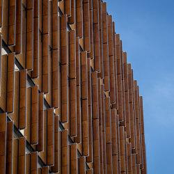 Ey Center | Chapas de madera | Prodema