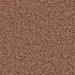 Superior 1041 - 8J95 | Wall-to-wall carpets | Vorwerk