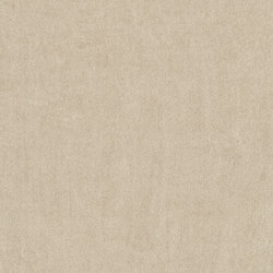 Exclusive 1060 - 8H76   Wall-to-wall carpets   Vorwerk