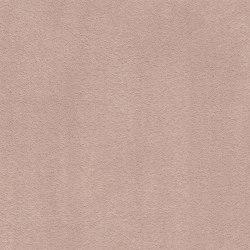 Superior 1067 - 1N48 | Wall-to-wall carpets | Vorwerk