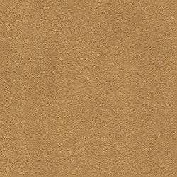 Superior 1067 - 2F39   Wall-to-wall carpets   Vorwerk