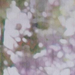 ALPHACOUSTIC VIEW - 0111 | Drapery fabrics | Création Baumann