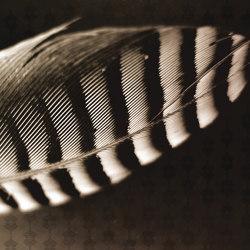 Plume Ecru | Wall coverings / wallpapers | Agena
