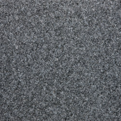 Atlas | silberpappel 861 | Wall-to-wall carpets | Fabromont AG