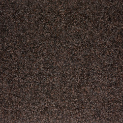 Graffiti   cacao 356   Wall-to-wall carpets   Fabromont AG