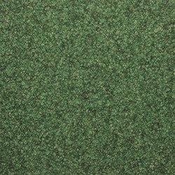 Jamila® | verona 561 | Wall-to-wall carpets | Fabromont AG
