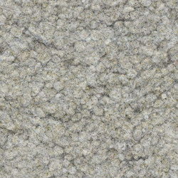 Abraxas & Abraxas COLORpunkt® | kies 797 | Wall-to-wall carpets | Fabromont AG