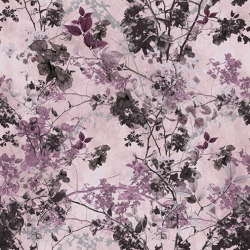Miley Silky Seal   Wall-to-wall carpets   OBJECT CARPET