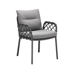 Caro Dining Chair | Chairs | solpuri
