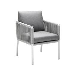 Club Dining Chair | Chairs | solpuri
