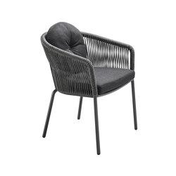 Loop Dining Chair | Chairs | solpuri
