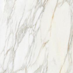 Borghini White | Baldosas de cerámica | Apavisa