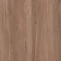 Junoon Maple | Carrelage céramique | Apavisa