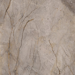 Wild Forest Grey | Ceramic tiles | Apavisa