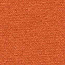 Bondai   005   3012   03   Upholstery fabrics   Fidivi
