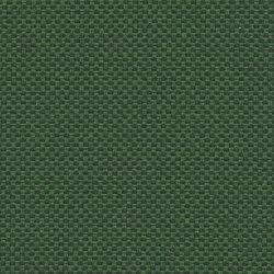 King L | 056 | 7536 | 07 | Upholstery fabrics | Fidivi