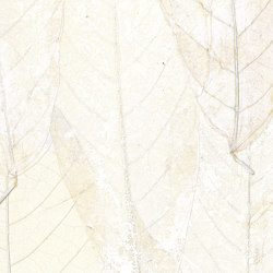 Écrin | Blanche neige | RM 972 01 | Wall coverings / wallpapers | Elitis