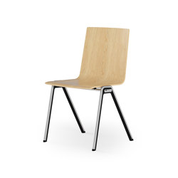 BLAQ wood | Chairs | rosconi