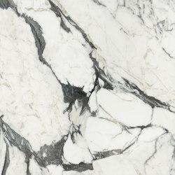 Les Bijoux de Rex | Calacatta Altissimo Blanc | Lastre ceramica | FLORIM