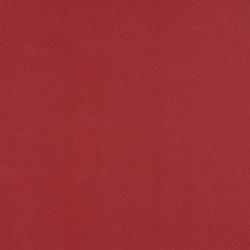 Topcoat | Conduct | Tejidos tapicerías | Luum Fabrics