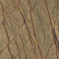 Marmoker Brown Forest | Ceramic tiles | Casalgrande Padana