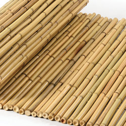 "Bamboos | Natural bamboo 20-24mm ""white quality"" 