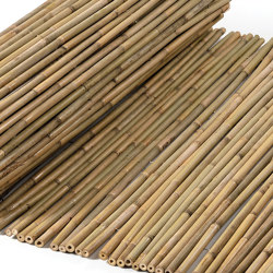 Bamboos | Tonkin Bamboo 16-22mm | Roofing systems | Caneplex Design