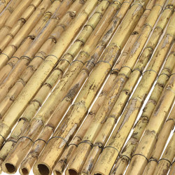 Greek Cane | Greek cane 14-18mm | Roofing systems | Caneplex Design