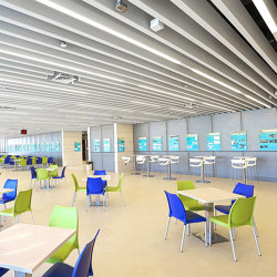 Character Design Ceiling + Lighting | Polylam + Line | Suspended ceilings | durlum